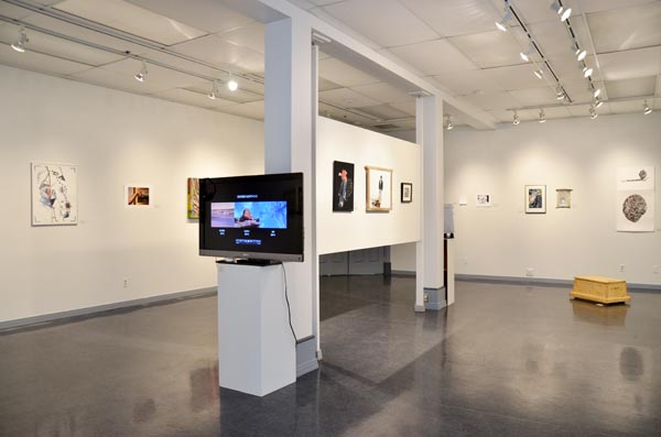 installation view web