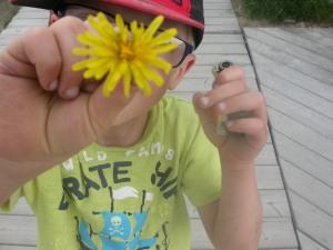 elden flower
